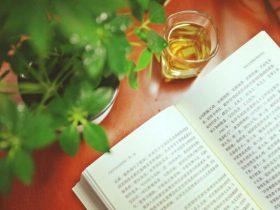 生活与阅读